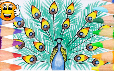 How to Draw a Peacock Coloring Page for Kids